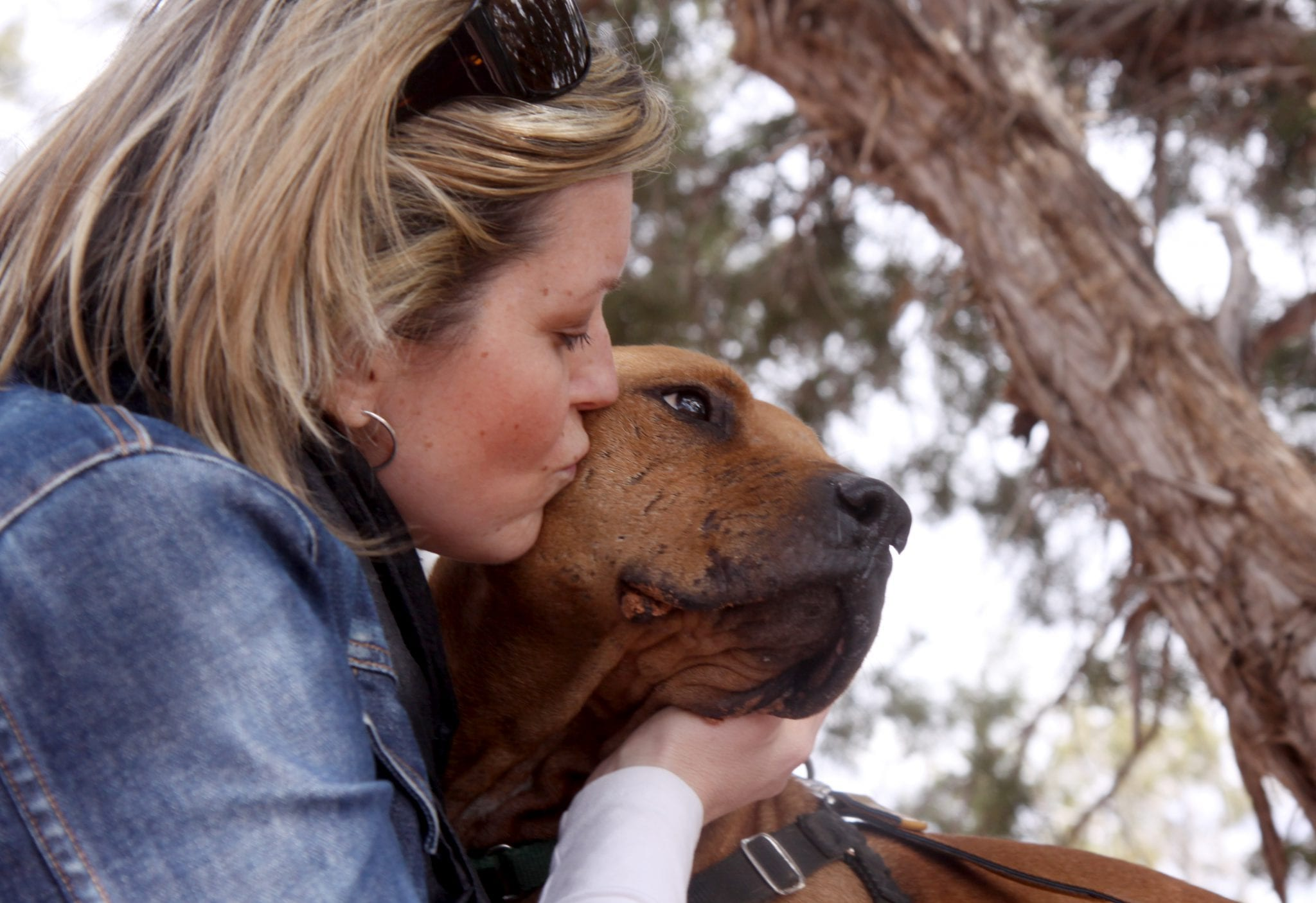 Me and Lucas, former Michael Vick (ugh!) fighting dog turned Vicktory Dog, Best Friends Magazine, Best Friends Animal Society: Kanab, Utah, 2009.