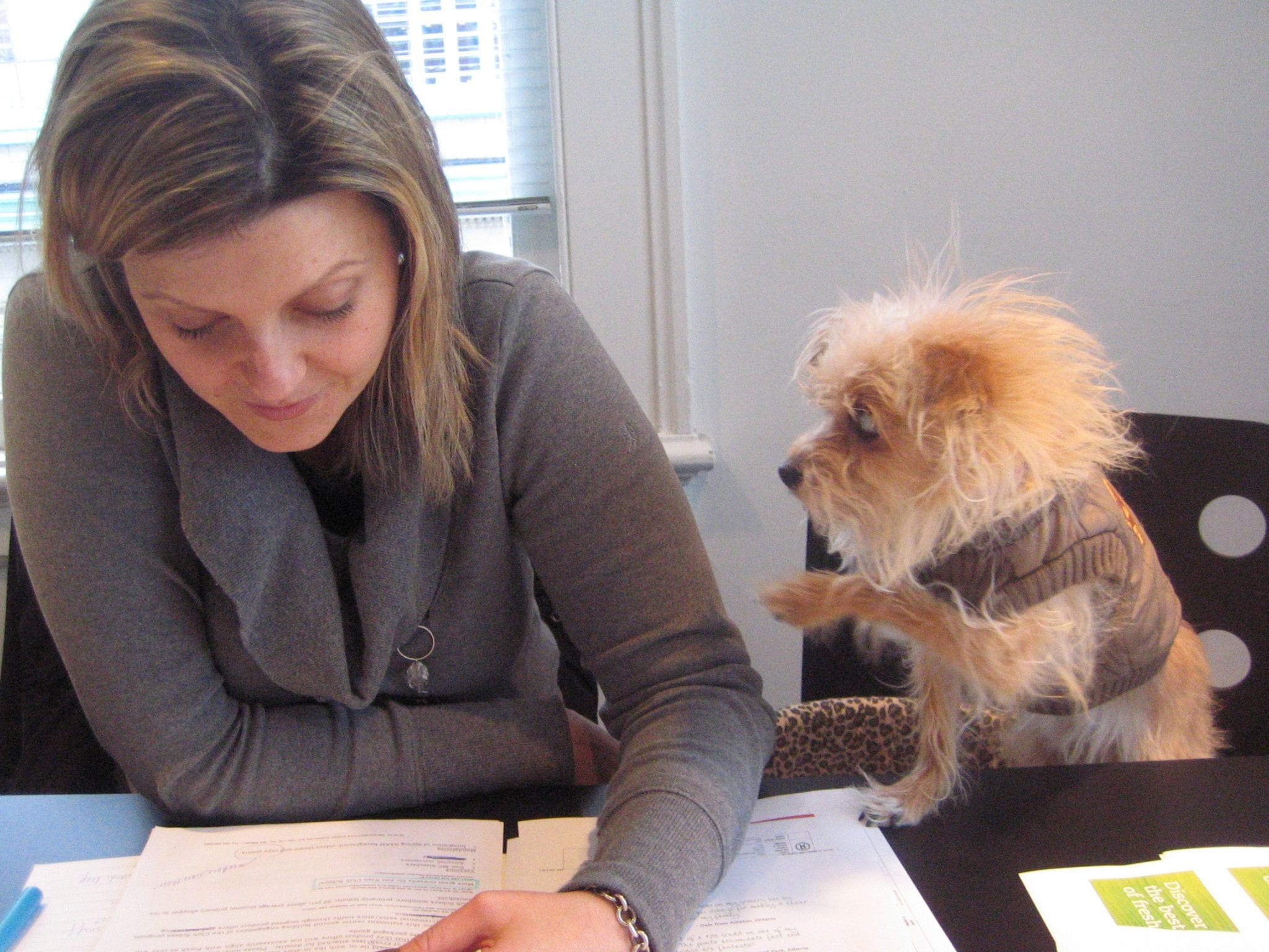 An ad copywriter and her sidekick, Cowboy, at Rethink: Vancouver, 2008.